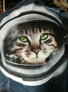 Kittens...in...space!