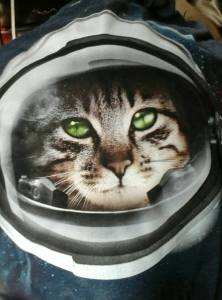 Kittens...in...space!